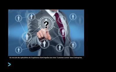 Quel rôle pour le directeur de l'expérience client ?